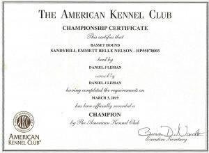 AKC Championship Certificate